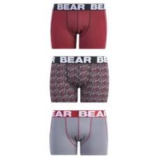 BEAR ETHNIC PRINT