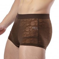 Brown Breathable U Convex Mens Trunk