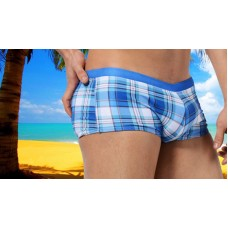 Austin Bem Briefs - Light Blue Check